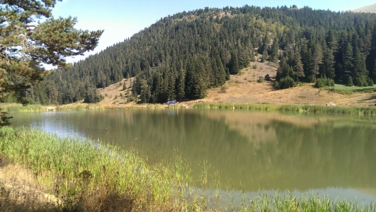 Eğriova Göleti Yenice Karabük