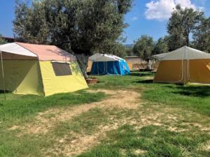 barbaros camping9