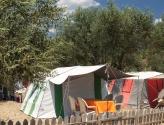 Zeytin Dalı Çadır Kamp